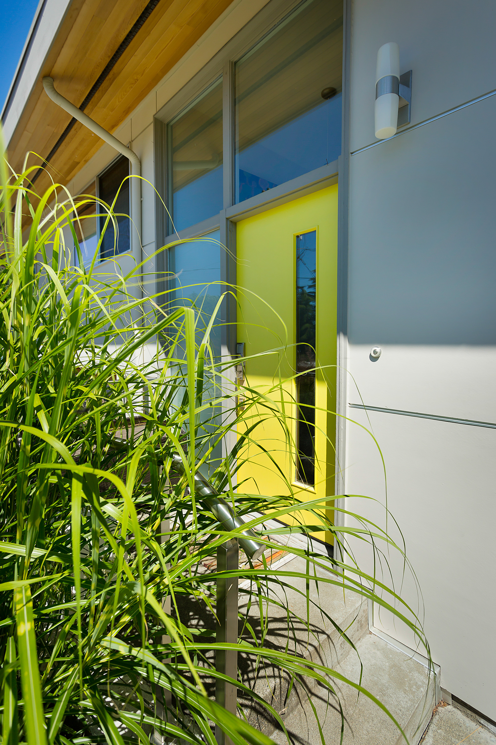 The front door and foliage outside of a house designed by Exterior Crew, LLC in Bellevue, WA